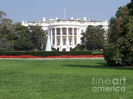 The White House by Paul Jessop