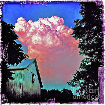Thunderhead by Kevyn Bashore