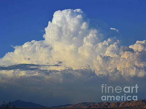 Thunderhead by Suzette Kallen