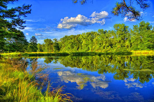 Topaz Reflections by James Corley