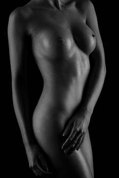 Torso by Stuart Thomson