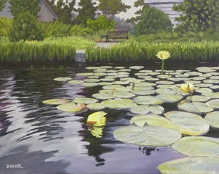 Tranquility Furman Botanical garden by Robert Decker