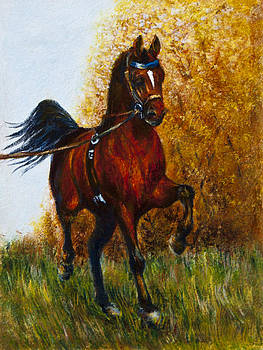 Trotting Champion by Sheila Kirk