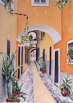 Via Grimaldi Saleri by Regina Ammerman
