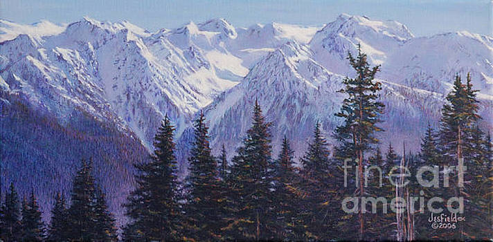 View from Hurricane Ridge by LeRoy Jesfield