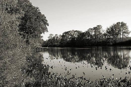 View by Thomas  MacPherson Jr