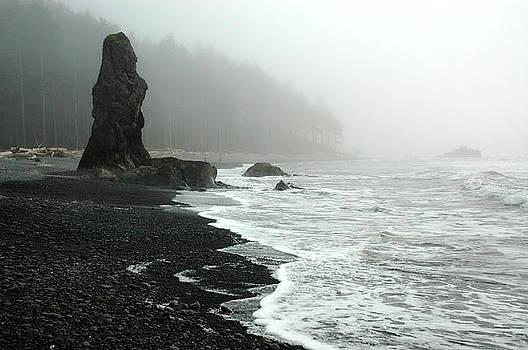 WA Coast Ruby Beach by Wanda Jesfield
