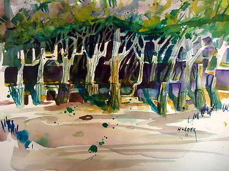 Walnut Grove by Steven Holder