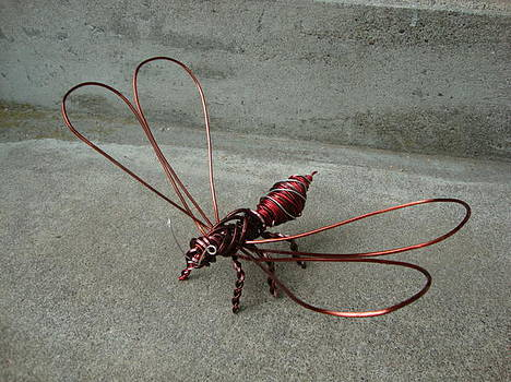 Wasp by Scott Faucett