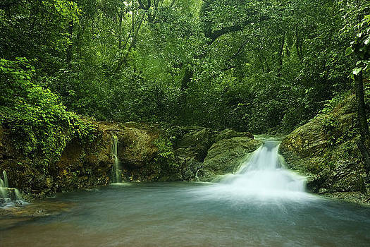 Waterfall by Sydney Alvares