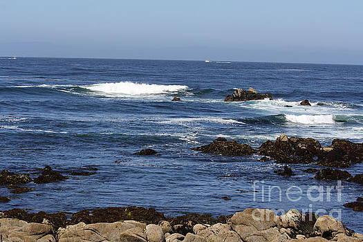 Waves II by Lea Cypert