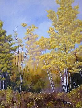 White Bark Yellow Leaves by Robert Decker