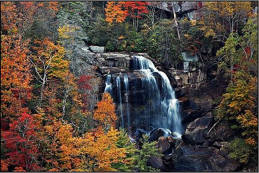 Whitewater Falls by Donnie Smith