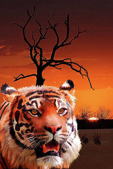 Wildlife Sunset by Michael Greenaway
