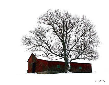 Winter Barn by Marj Shockley