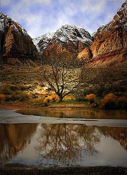 Winter Reflections by Nabila Khanam