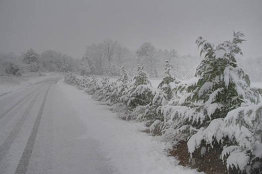 Winter Wonderland by James Corley