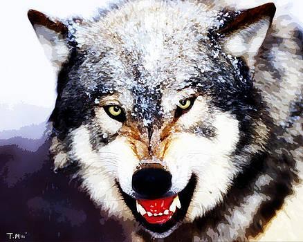 Wolf by Tyler Martin