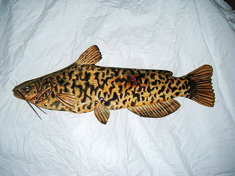Wooden brown Bullhead Catfish number one by Lisa Ruggiero