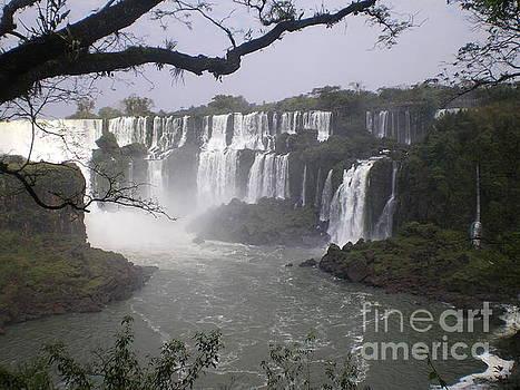 Woodland Lookout at Iguassu Falls by Paul Jessop