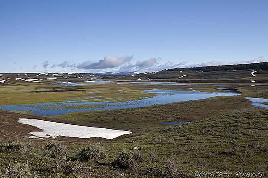 Yellowstone Plateau by Charles Warren