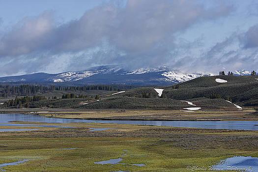 Yellowstone Vista 10 by Charles Warren
