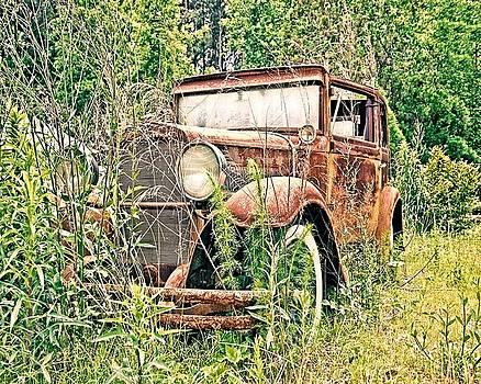 Abandoned by Susan Leggett