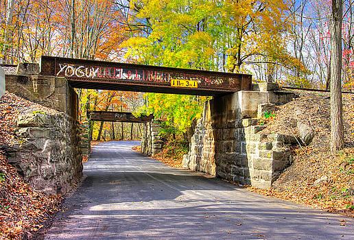 ... And The Steel Rails Still Ain't Heard the News No. 2 - Near Rupert, Columbia County PA by Michael Mazaika