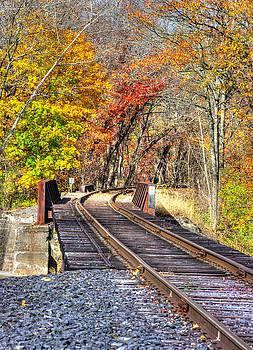 ... And The Steel Rails Still Ain't Heard the News No. 3 - Near Rupert, Columbia County PA by Michael Mazaika