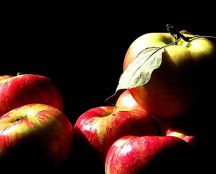 Apple Season by Angela Davies