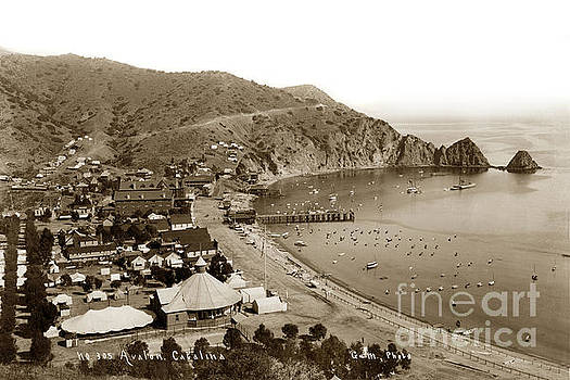 California Views Archives Mr Pat Hathaway Archives -  Avalon Bay Catalina as seen from the hillside. Circa 1895
