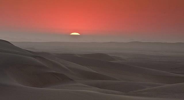 Sylvia J Zarco -  Awash in a sea of sleeping sand
