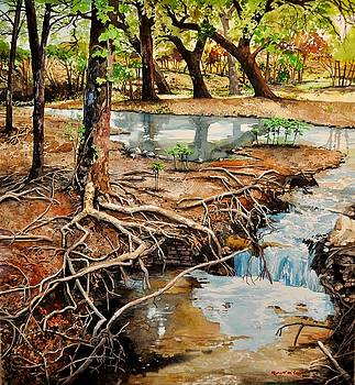 Canyon Creek by Robert W Cook
