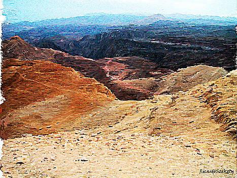 Dessert  Landscape Near Eilat by Ricardo Szekely
