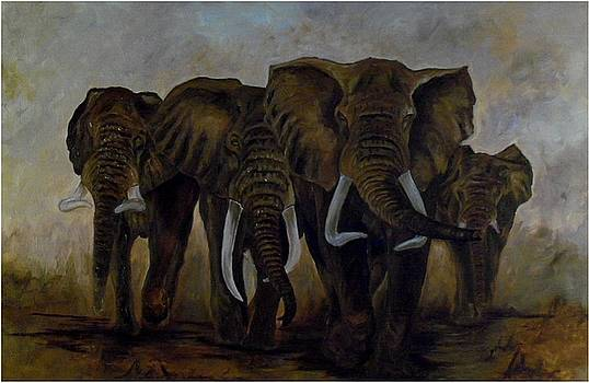 Elephant herd hurrying for a drink by Amos Ochieno