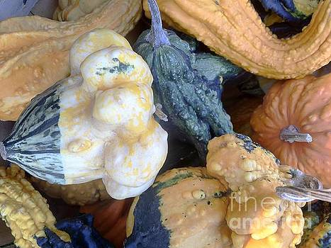 Edward Sobuta -  Fall Colors Pumpkins and Gords 3