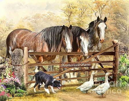 Featherwell Farm by Trudi Simmonds