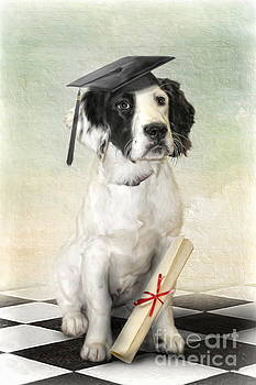 Graduation Day by Trudi Simmonds
