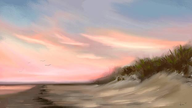 Gulf Sunset  by Greg Neal