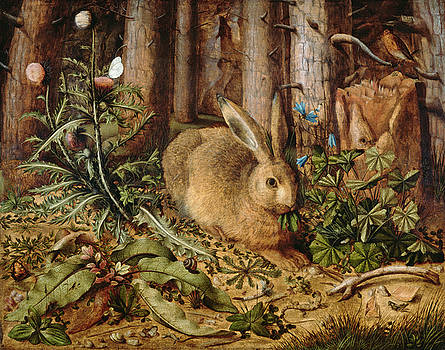 Hans Hoffmann - A Hare in the Forest by Bishopston Fine Art