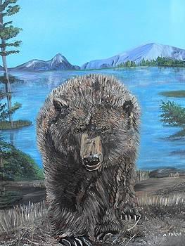 Hello Grizzley Bear by Aleta Parks