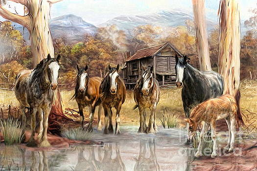 High Country Hideaway by Trudi Simmonds