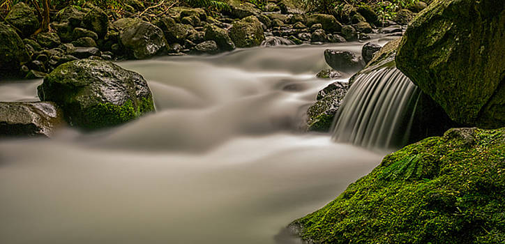 Iao stream in the Iao Valley State Park by David Attenborough