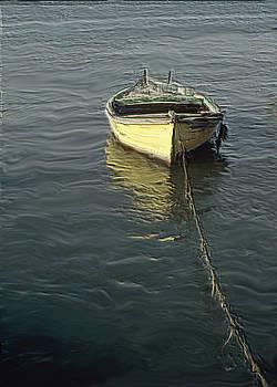 In the Sea of Galilee-Kineret by Ricardo Szekely