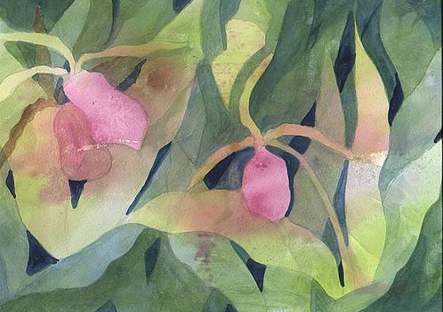 Ladyslipper by Jane Croteau