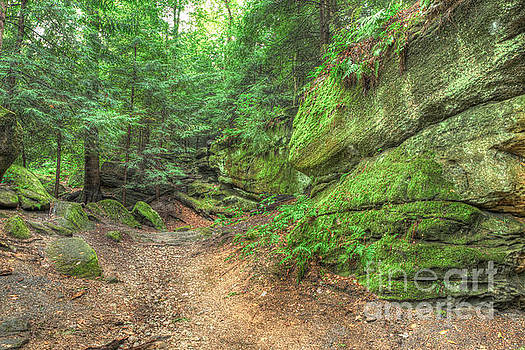Ledges Hiking Trail  by Patrick Shupert