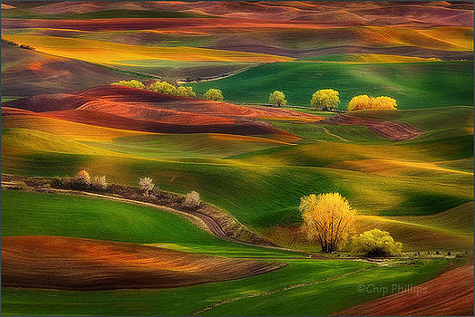 Michael Duplessie Photography, Beautiful Photography, weather, lovely, perfect ,palouse,washington by Dr Michael Duplessie MD