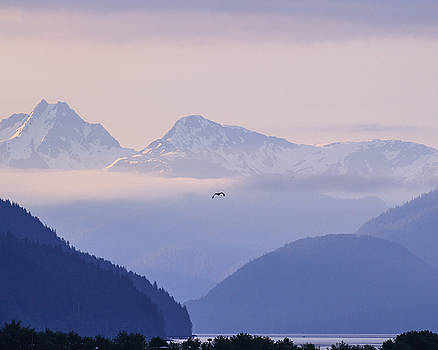 Allan Levin -  Morning Cloudness at Taku Inlet Juneau