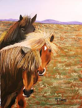Mustangs by Michele Turney