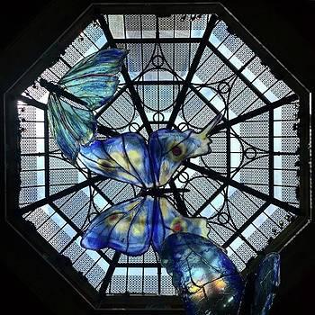 💠 #palazzo #lasvegas #lookingup by Heidi Lyons